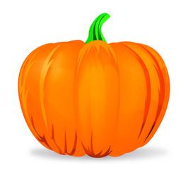 Pumpkin-citrouille