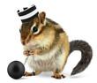 Funny criminal chipmunk in prison hat