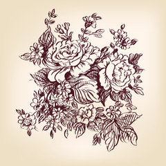 roses hand drawn vector llustration realistic sketch