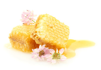 golden honeycombs with honey and wildflowers isolated on white.