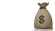 Money Bag, seamless loop