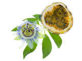 passionflower with cut maracuya
