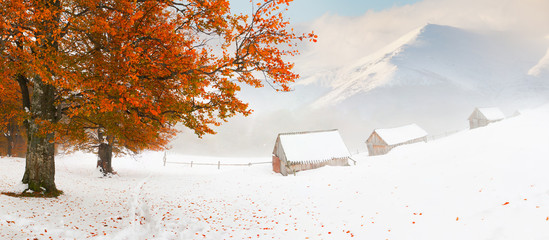 Colorful autumn landscape in the mountains. First snow in Novemb