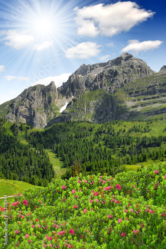 view of the mountain Brenta-Dolomites Italy