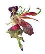 Purple Pixie CA