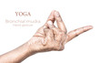 Bronchial mudra