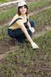 gardener at  onion plant in spring