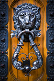 Decorative lion head knocker on a wooden door