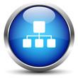 Netzwerk Button Blau