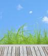 terrasse bordée d'herbe