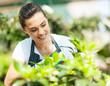 pretty young woman gardening