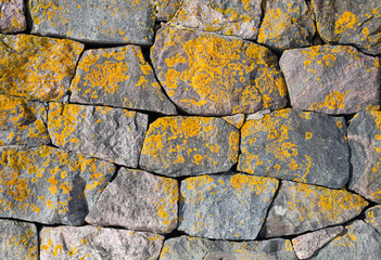 Texture of old stone wall with bright lichen