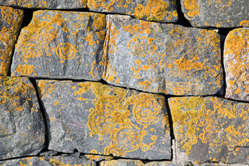 Old stone wall with bright lichen