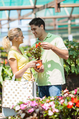 happy young couple shopping for plants in nursery