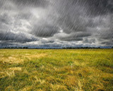 Heavy Rain over a prairie in Brittany, France