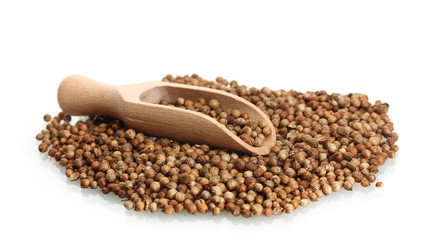 Heap coriander seeds in wooden spoon isolated on white
