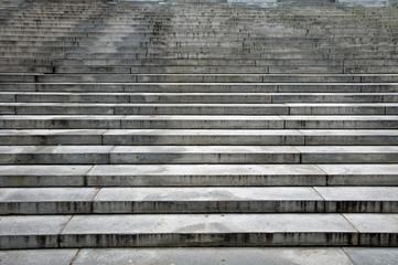 Harvard library steps