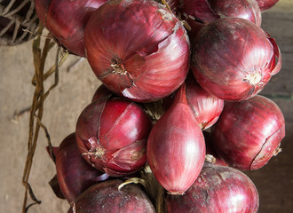 Red onion in a bundle