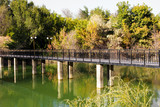 bridge over the lake in the arboretum. Shymkent