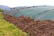Substat, Lagerung - Biogasanlage