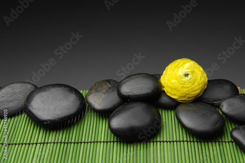 ranunculus and massage stones  in green mat