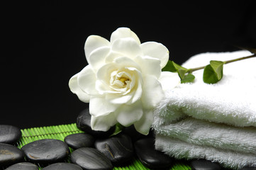 Beautiful white \Gardenia with zen stone and towel  on green mat