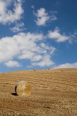 Toscana, Val d'Orcia, rotoballe di fieno