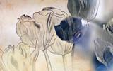 Fototapety karte zeichnung trauer