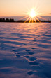Foot prints in thick snow at sunset