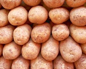 raw potatoes closeup, natural background