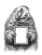 Pencil drawing of a marmot