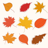 Collection of doodle golden autumn leaves