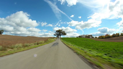 Countryside Driving