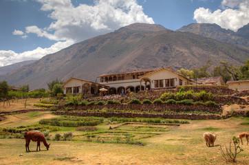 Typical hacienda