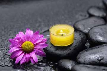 Spa Still life with gerbera and yellow candle on stones