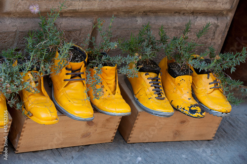 old shoes processed on flowerpots