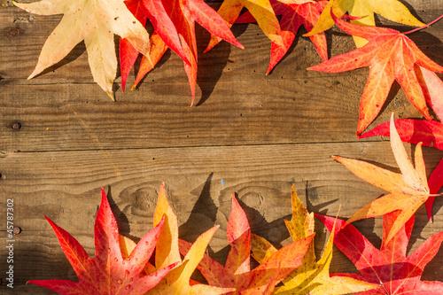 Umrandung aus Herbstblättern