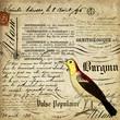 Fond calligraphie et oiseau