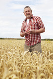 Farmer Inspecting Wheat Crop In Field