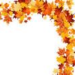 Herbst: oben mit Blättern