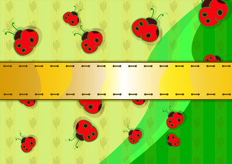 Coccinelle vector