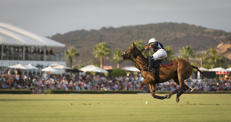 Polo mid flight