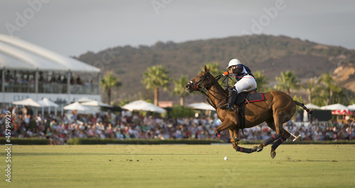 Polo mid flight - 45794929
