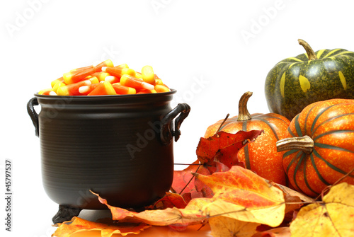 Halloween Candy Scene