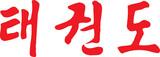 Tae Kwon Do Written in Modern Korean Hangul Script Calligraphy poster
