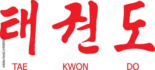 Tae Kwon Do Written in Modern Korean Hangul Script with English - 45801327