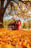 Rotes Holzhaus in Småland, Schweden im Herbst