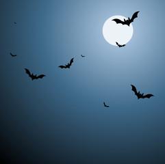 Bats in Sky Background in Vector