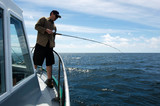Fishing Safari in New Zealand