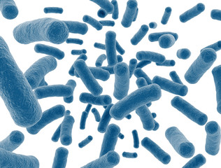 Bacteria virus cells isolated on white background